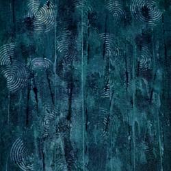 raindrops swamp