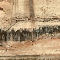 Lake Powell Weeping Springs